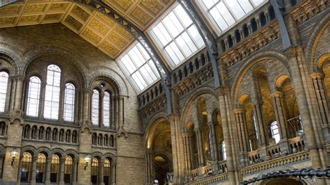 Main hall in Natural History museum, London, England, UK