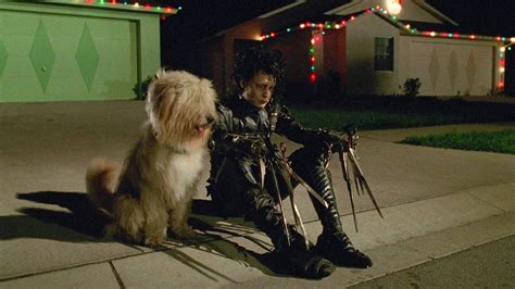 Does EDWARD SCISSORHANDS Really Qualify as a Christmas